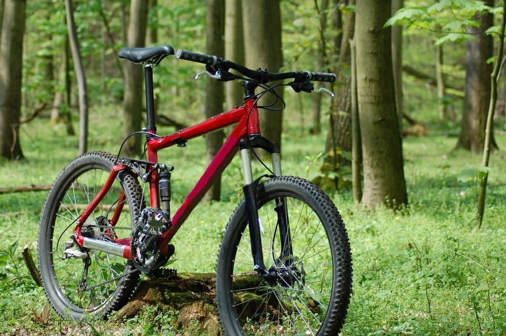 Types of Mountain Bikes: A picture showing a freeride MTB