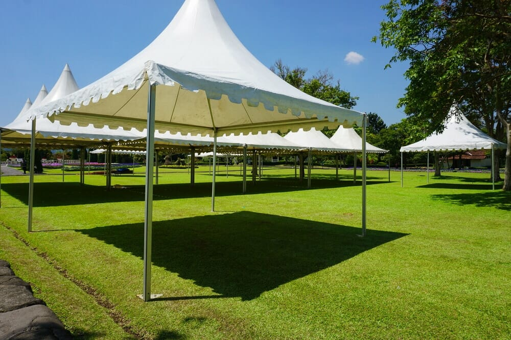 A picture showing several canopies including the Best Pop Up Canopy